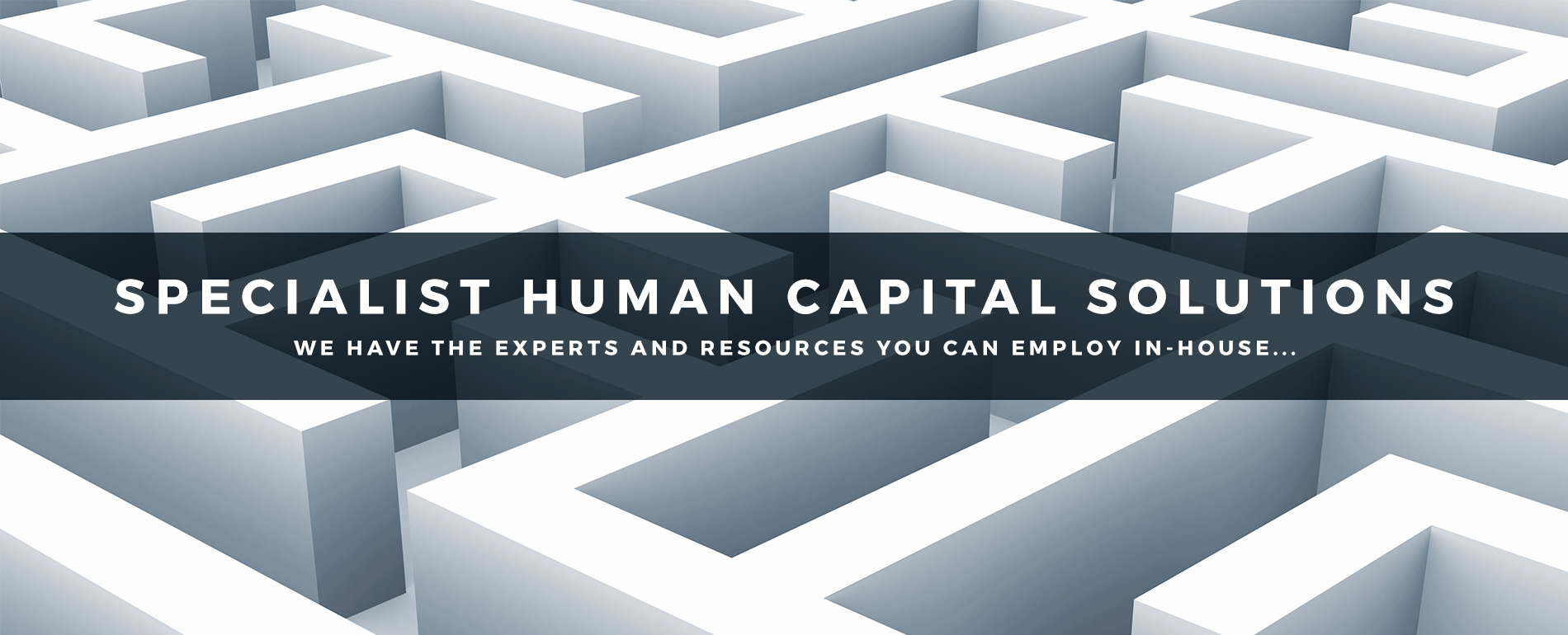 Specialist Human Capital Solutions